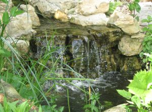garden pond waterfall